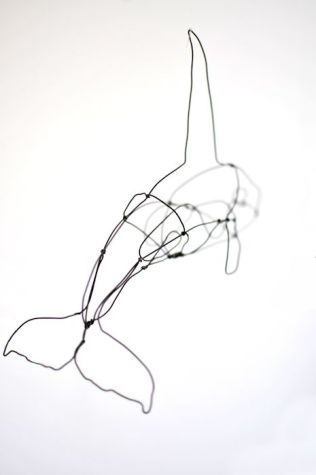 wire orca 2