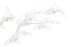 wire whales 3
