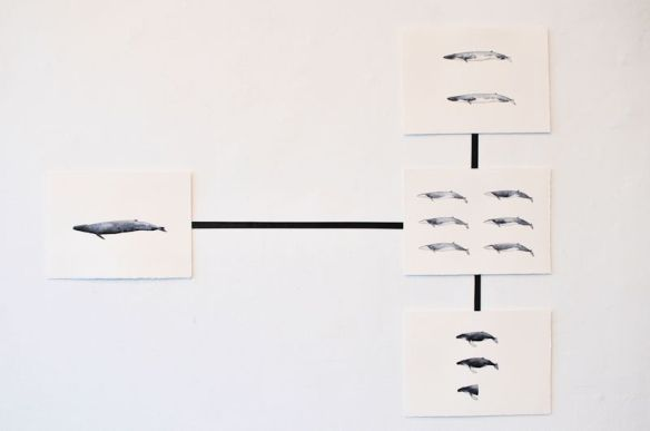 Whale Value Chart, ink and watercolour on paper and tape