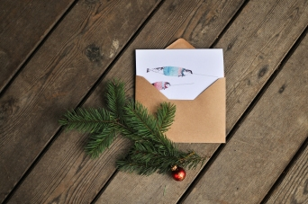 Winter Whale card series