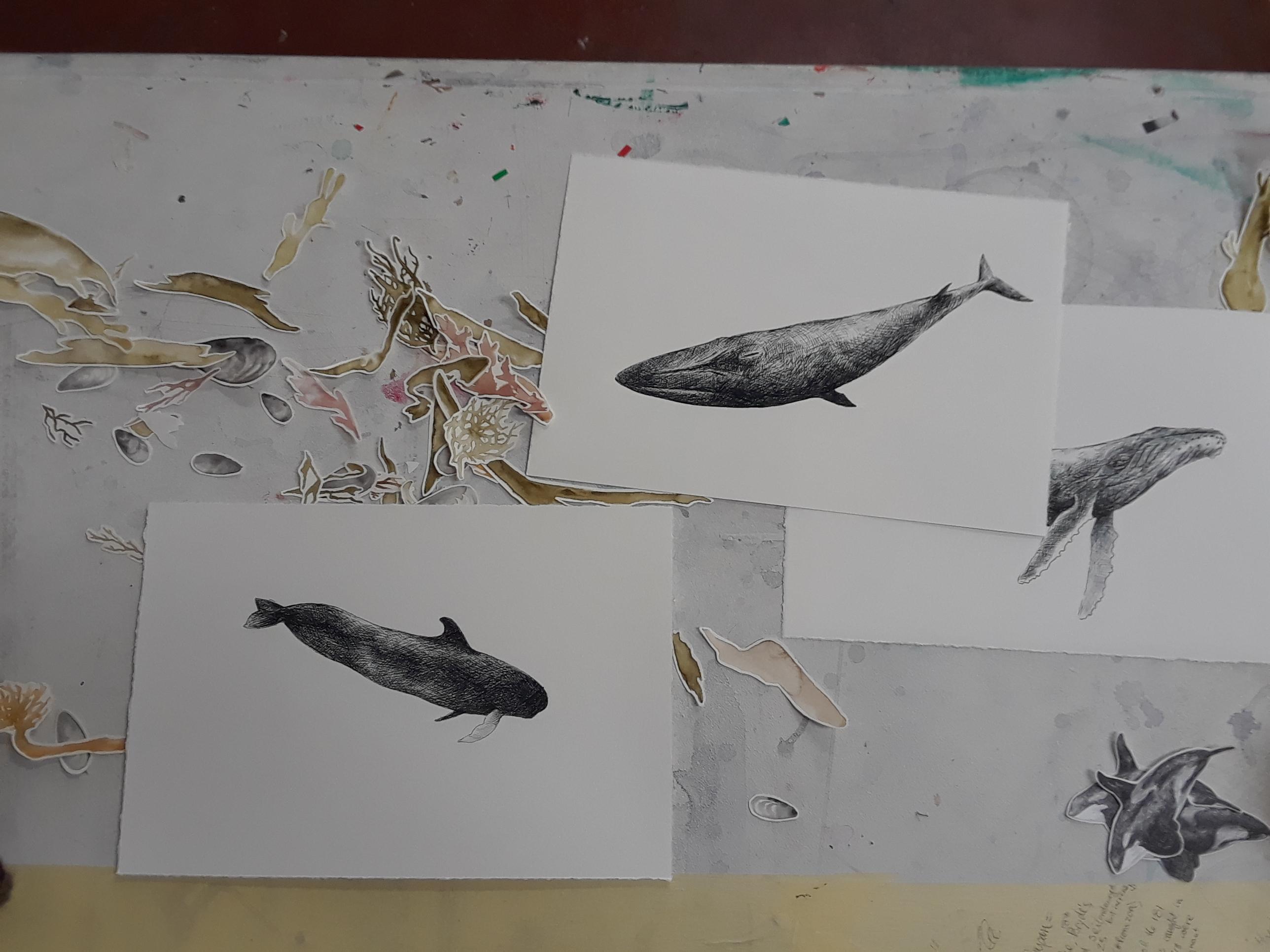 Studio work in progress