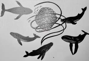 Bubble netting papercut by Leticiaà Legat