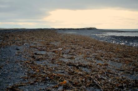 Skagastrond Beach